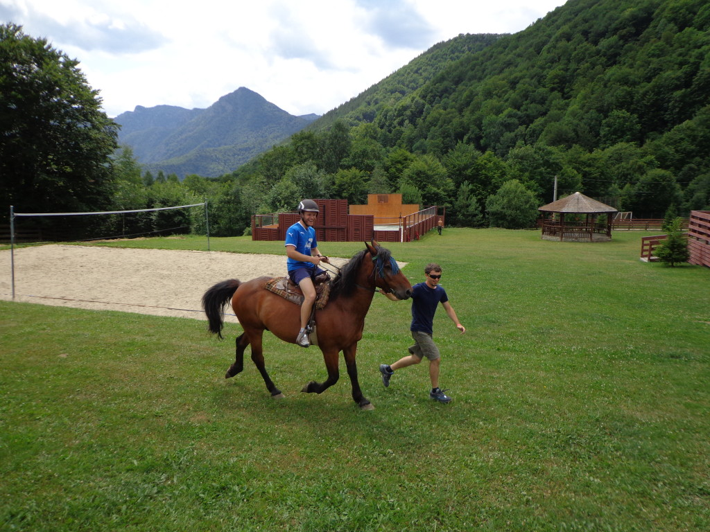 horse volley